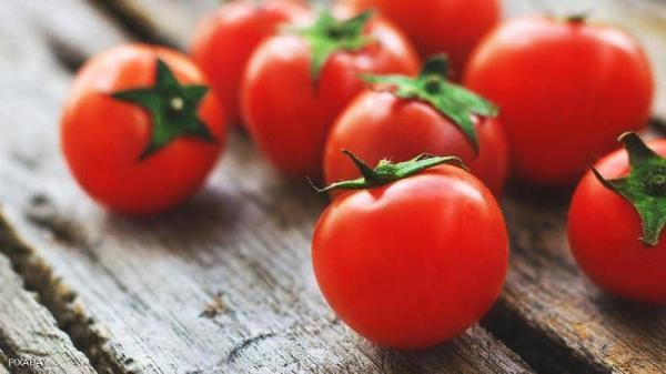 بحث علمي يكشف علاقة الطماط بالخصوبة عند الرجال
