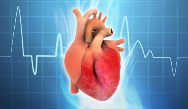 تعرف على أسباب عدم انتظام دقات القلب