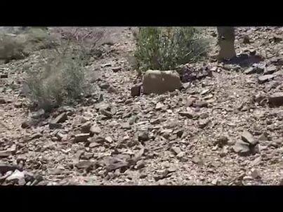 معلومات خطيرة عن لغم حوثي خطير زرعوه في طريق حراس الجمهورية بالليزر ومموه ويتم تفجيره عن بعد (فيديو)